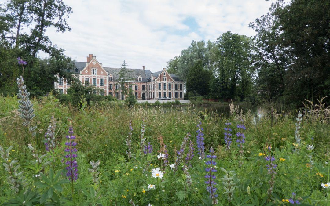 Le château de Robersart