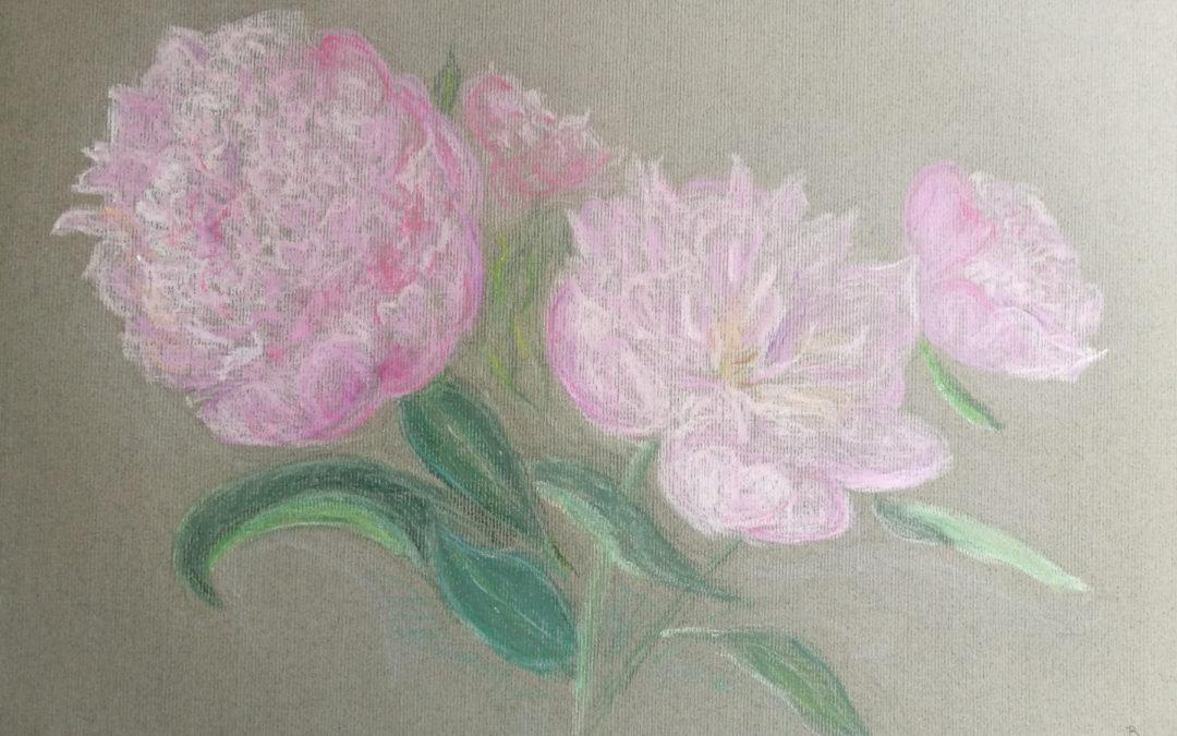 Pastel : un bouquet de pivoines