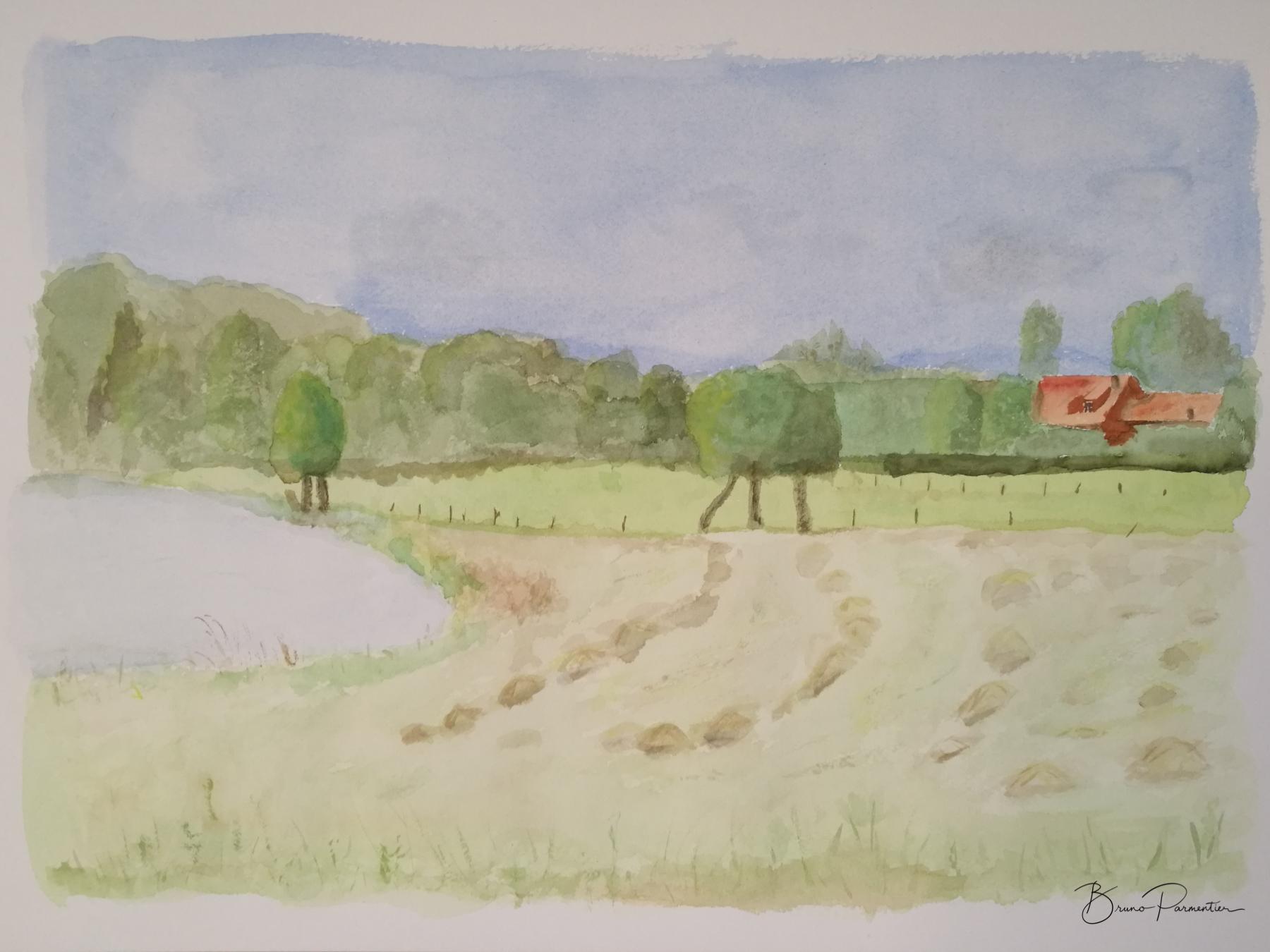 Paysage au champ de foin (aquarelle - Août 2019)