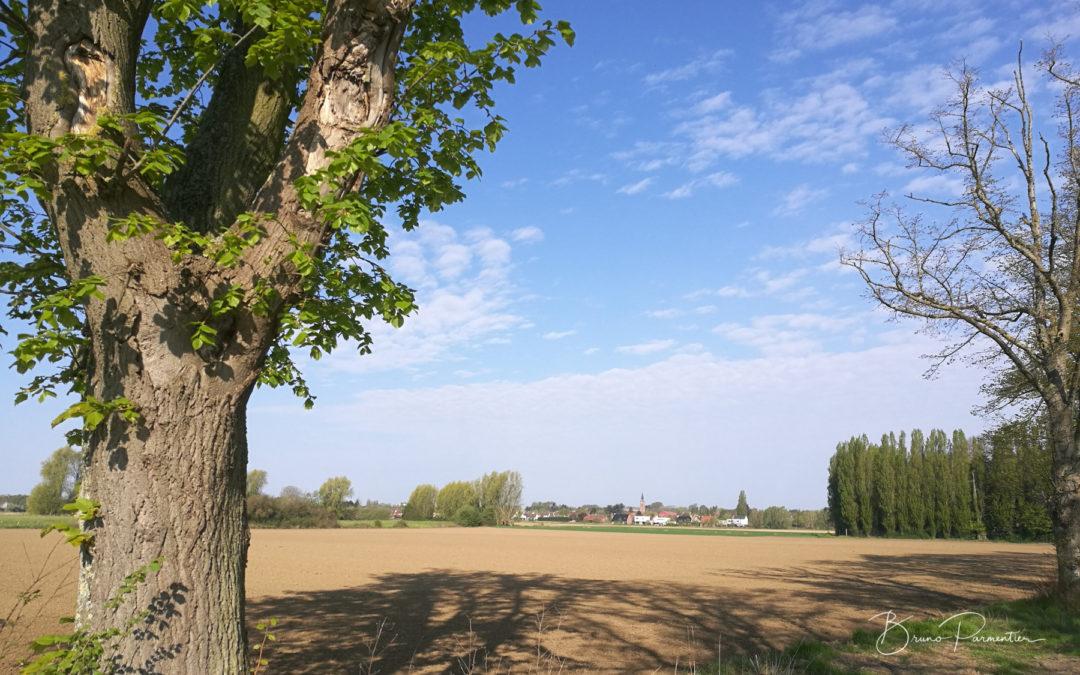 Habiter (presque) à la campagne