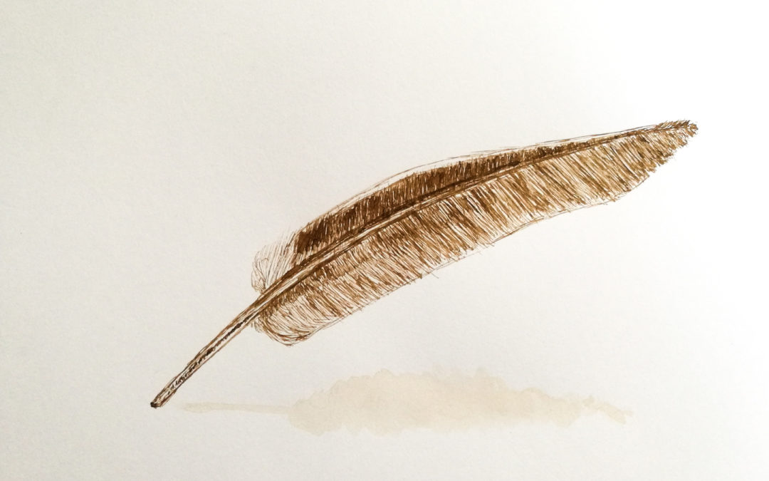 Dessin à la plume